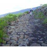 Camino Real ein Musterbeispiel, La Palma, Wandern