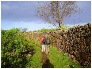 Camino Real, La Palma, Wandern,