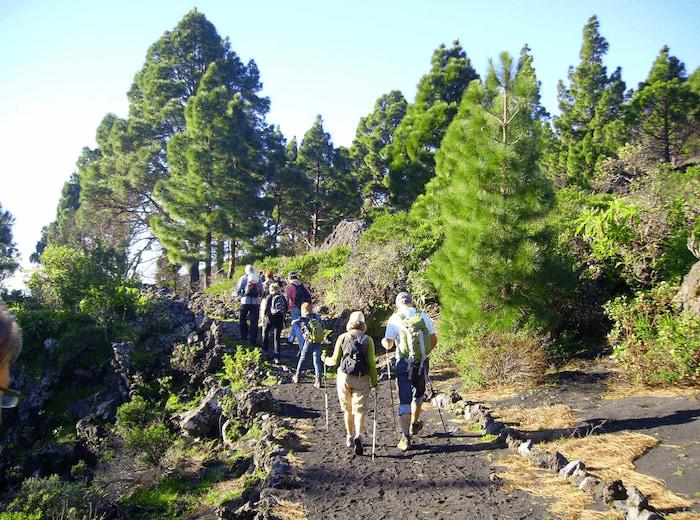 La-Palma-Wandern-auf-dem-GR-130-bei-Monte-de Luna