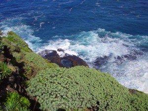 Blick zur Lomada Grande, La Palma