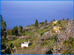 Wandern-im-Februar-in-La-Palma