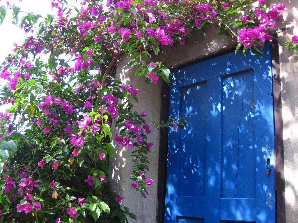 Träumen auf La Palma