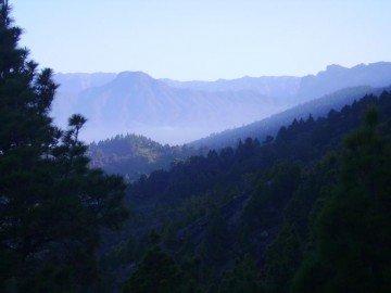 Blick zum Bejenado der Hausberg von El Paso am Vormittag alles erscheint etwas dunstig.,La Palma