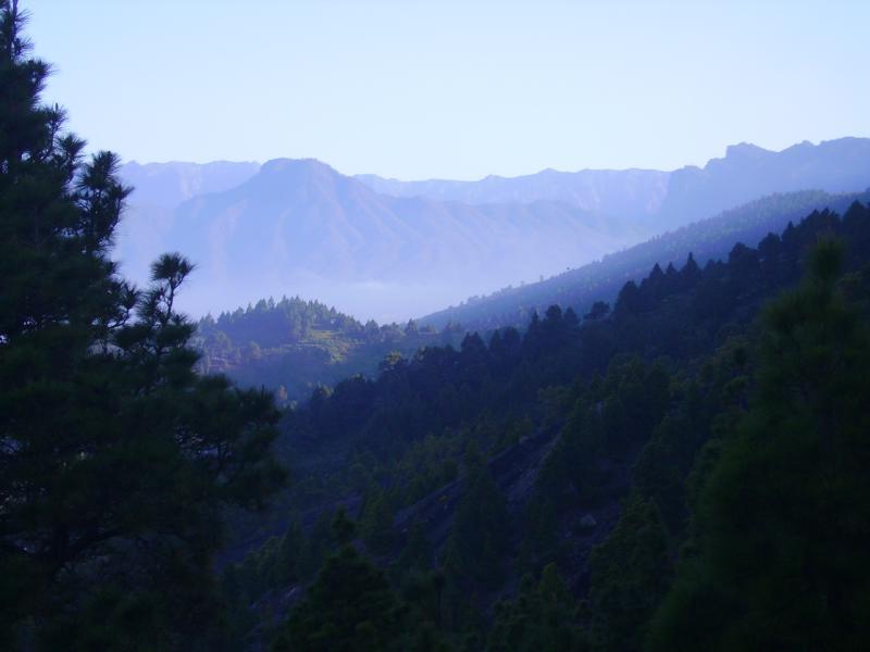 Blick zum Bejenado, der Hausberg von El Paso. Am Vormittag  erscheint die Landschaft dunstig. La Palma
