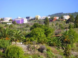 TIJARAFE,Pueplo,La Palma