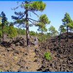 Wanderpfad unterhalb des Vulkan Martin, La Palma.