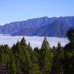 Blick zum Bejenado,La Palma,Wandern,