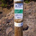 Auf dem Gipfel des Nambroque,La Palma,Wandern,