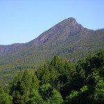 Aussicht auf den Bejenado den Hausberg von El Paso. La Palma, Wandern