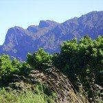 Blick zur Punto de los Roques. La Palma, Wandern,