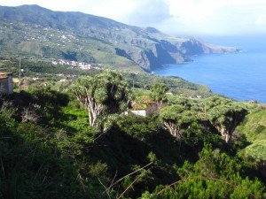 Ausblick unterhalb des Mirador La Tosca, La Palma,Wandern