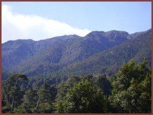Blick zum Roque de los Muchachos von Norden, La Palma, Wandern,