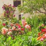 Schöner Bauerngarten in La Galga, La Palma, Wandern,