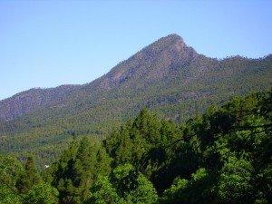 Pico Bejenado der Hausberg von El Paso, La Palma, Wandern,