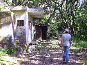 Altes Haus am Wanderweg, La Palma, Wandern