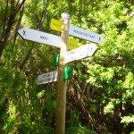 Wegegabelung beim PR LP 17, La Palma, Wandern