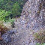 Wanderpfad zur Cumbrecita, La Palma, Wandern,