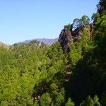 Die Cumbrecita kommt in Sicht, La Palma,