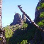 Roques de La Cumbrecita, La Palma, Wandern