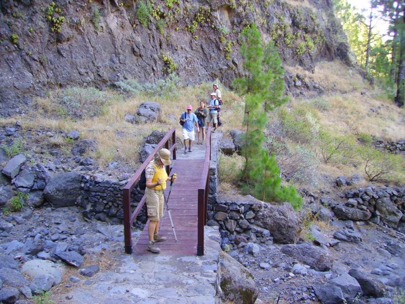 Kurz vor der Cumbrecita, La Palma, Wandern