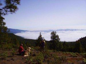 Ausblick in den Osten von La Palma, Wandern,