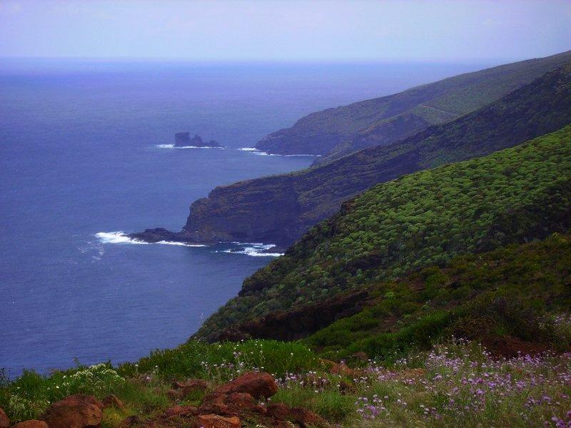 La-Palma-Wanderungen_Ausblick-auf-die-Steilküste-bei-Puntagorda