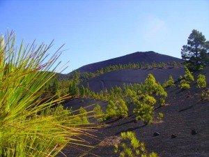 Blick zum Vulkan San Martin ,La Palma, Wandern