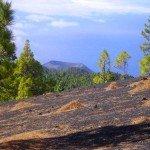 Beim Abstieg, Vulkan San Antonio, La Palma, Wandern