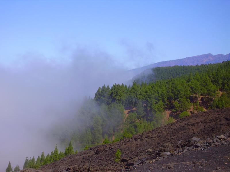 Wolkenaufzug, La Palma, Wandern