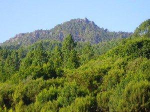 La Palma, Wandern, auch ein Tolles Wanderziel der Nambroque