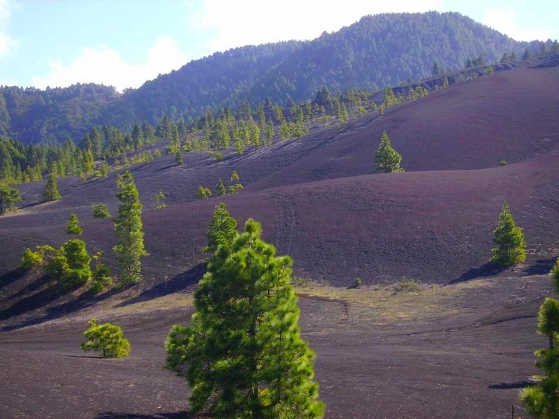 Llano de Jable mit rotem Schimmer,La Palma