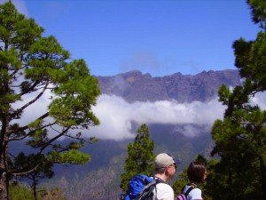 La Palma, Wandern,Cumbrecita,