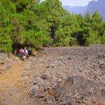 Beim Abstieg, La Palma, Wandern,