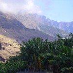 Im Barranco de los Angustias, La Palma, Wandern,