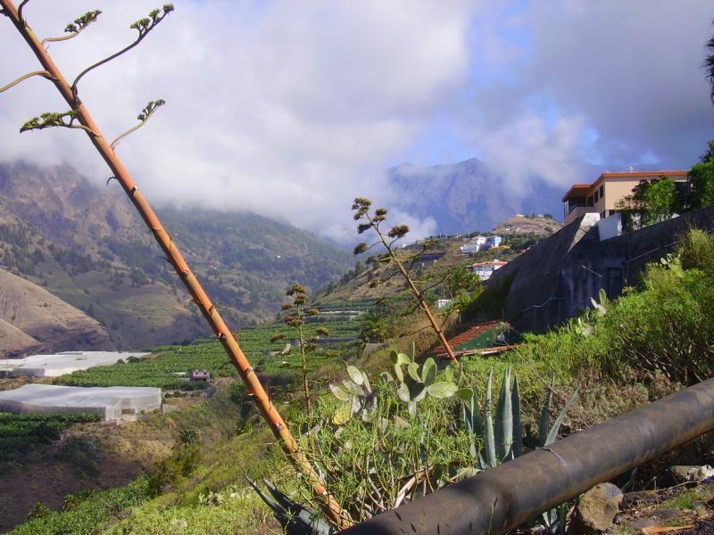 Beim Aufstieg nach Argual, La Palma, Wandern,