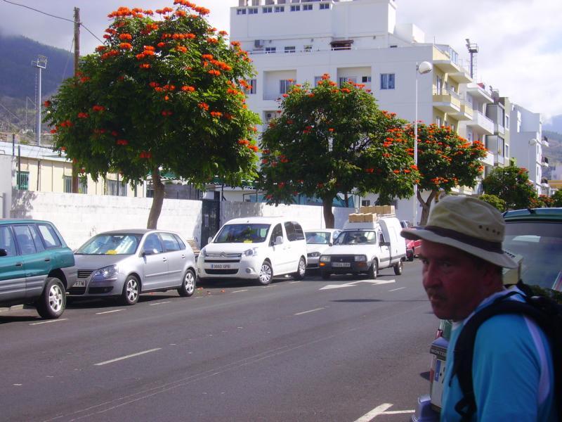 Gleich sind wir wieder am Auto,La Palma, Wandern,