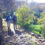 Bei Tinziara auf La Palma.Wandern