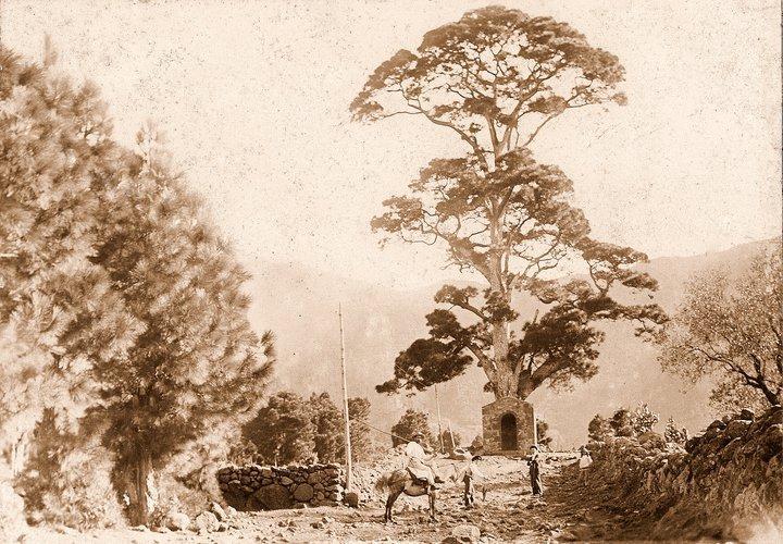 Ermita,Virgen,del Pino,Vorgänger Häuschen,La Palma,Wandern, Quelle Historia de La Palma