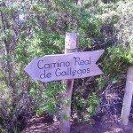 Wanderschild,Barlovento,La Palma, Wandern