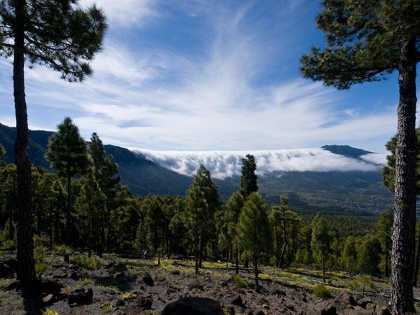 Wolkenfall-Cumbre Nueva-Bejenado-La Palma-Wandern