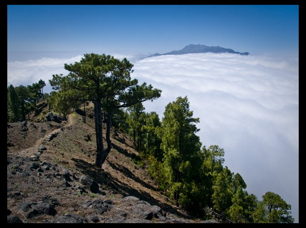 Auf dem Weg zur Punta de los Roques-La Palma-Wandern-Faber Yvonne