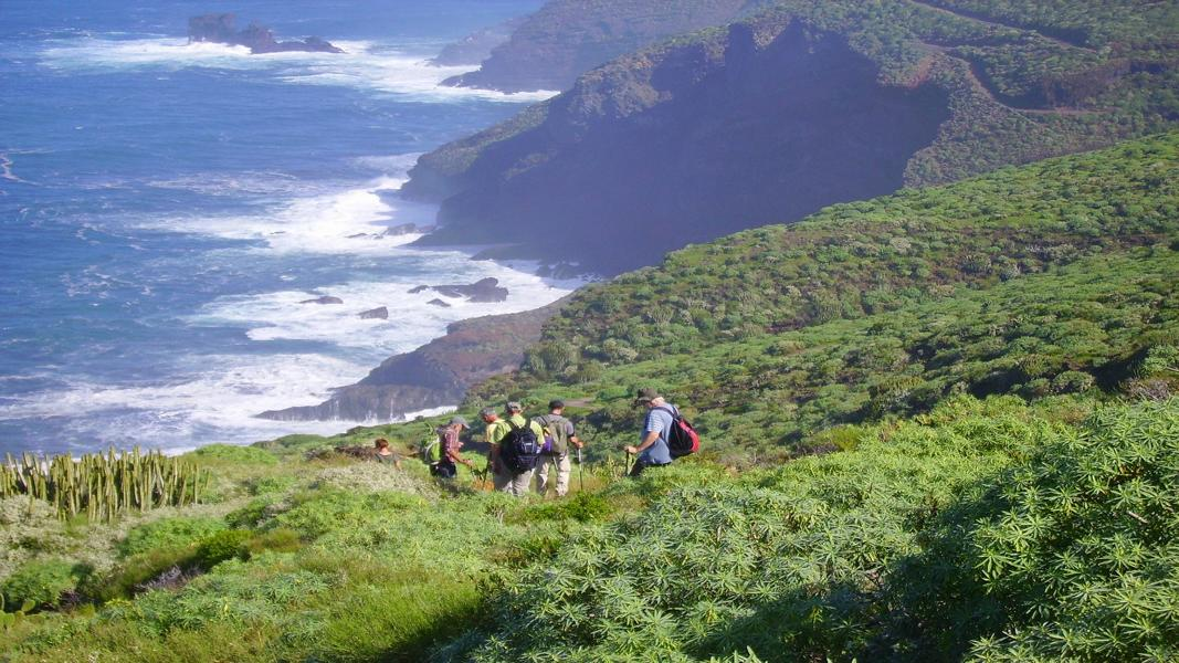 Lomada-Grande-auf-La-Palma-Wandern