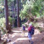 Wanden-Norden-La-Palma