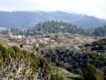 Wandern La Palma_Puntagorda zur Zeit der Mandelblüte