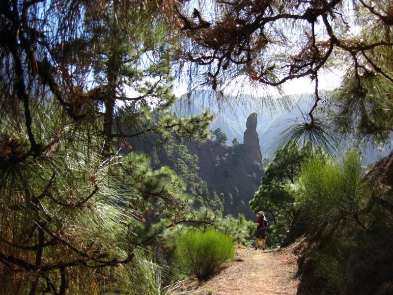 La Palma-Wandern-Caldera de Taburiente-Roque Idafe