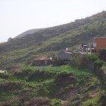 La-Palma-Wandern-Unterhalb-von-Granel