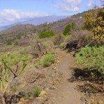 La-Palma-Wandern-Wanderpfad