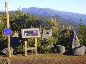 La-Palma Wandern Mirador-Llano-de-la-Veta