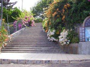 La-Palma-Aufgang zur Hauptstraße ein Blumenmeer