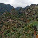 La Palma-Wandern-Barranco Fagundo